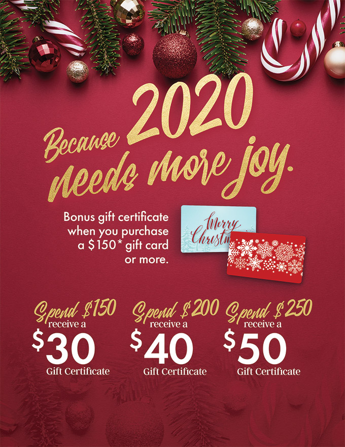 holiday gift cards special - sanctuary day spa